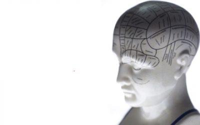 El cerebro es más grande que el cielo